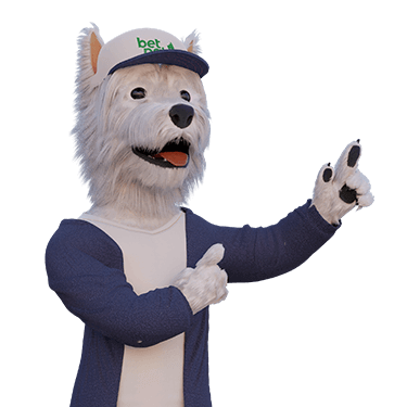 betpal dog mascot showing minimum and maximum withdrawal at nyspins