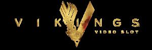 300x100-vikings