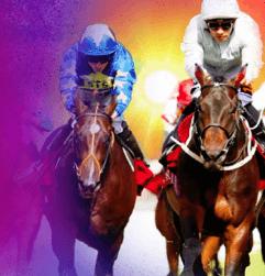 befred horse racing