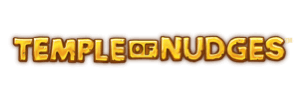 300x100-temple-of-nudges
