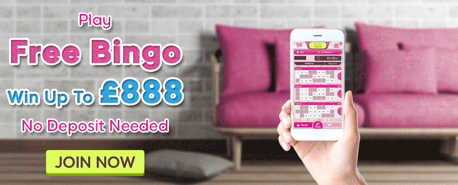 888ladies bingo promotion banner
