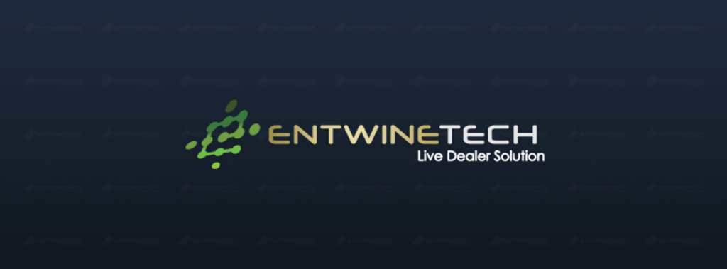 entwine tech logo