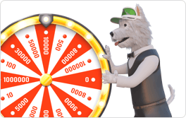 money wheel betpal dog
