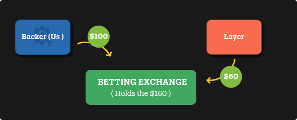 how exchange betting works