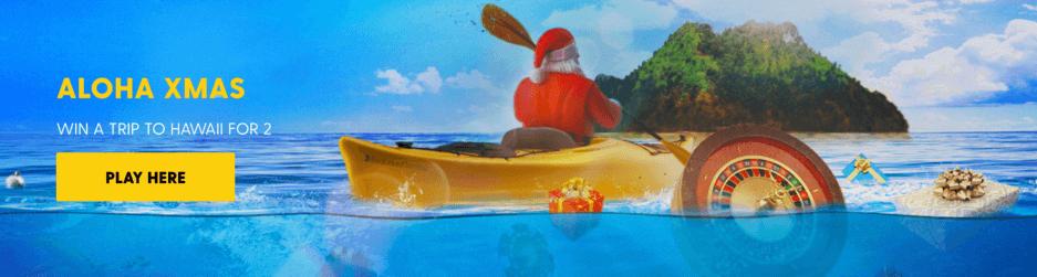bethard aloha xmas