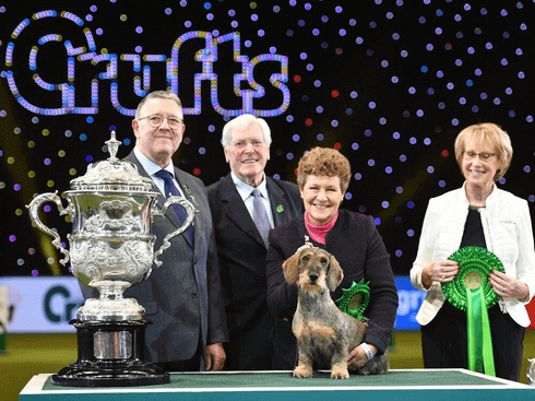 Maisie the Wire-haired Dachshund is the winner of Best in Show 2020 at Crufts 2020. Pictured with her owner Kim McCalmont (centre right) and presenter Peter Purvis (centre left).