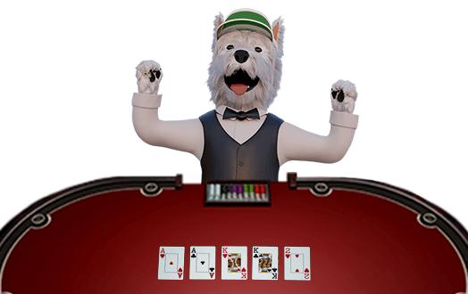 betpal dog mascot playing poker