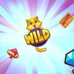 wild symbol banner